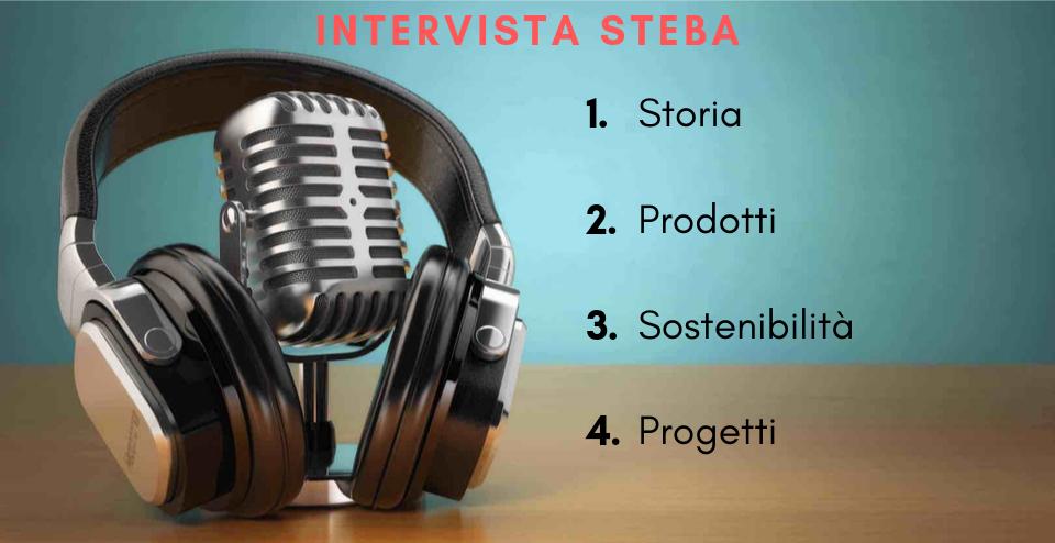 intervista steba, articolo di presentazione